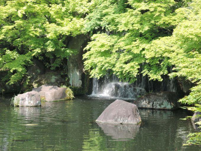 歩いているだけで水音が!緑の木々に鳥の声に心癒される風景。