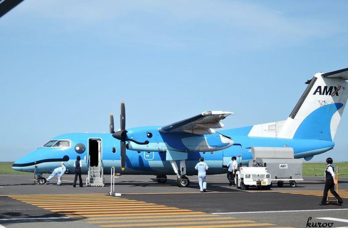 整備士の方も乗組員も一体になってかわいがっているこの機体!みえない部分も魅力。