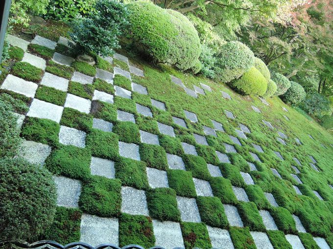 桜、紅葉の名所「東福寺」に歩いて5分!雲龍院などの観光名所にも便利な立地。