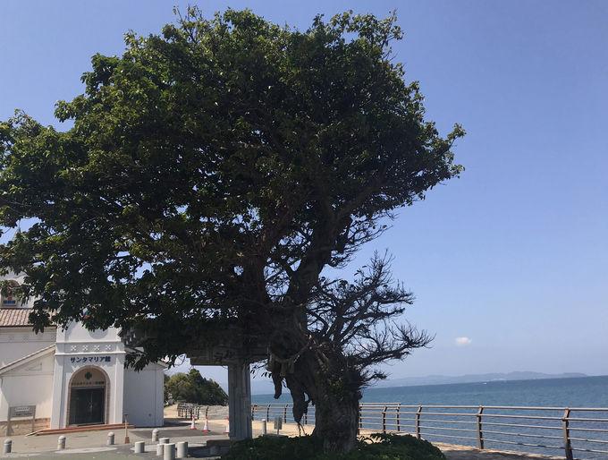 天草ならではの風景!有明町の海岸