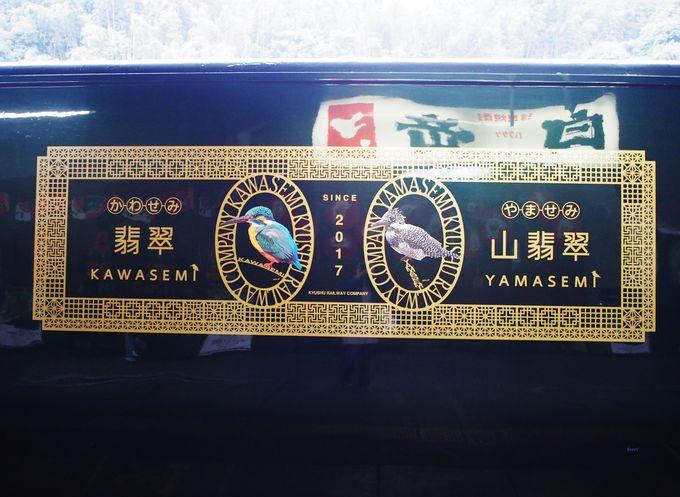 特急「かわせみ やませみ」!熊本から人吉を飛ぶがごとく疾走