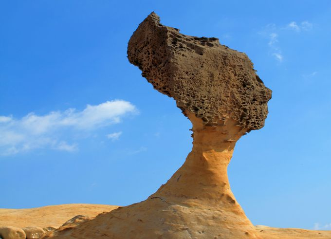 ここが台湾?別世界の奇岩が並ぶ「野柳」