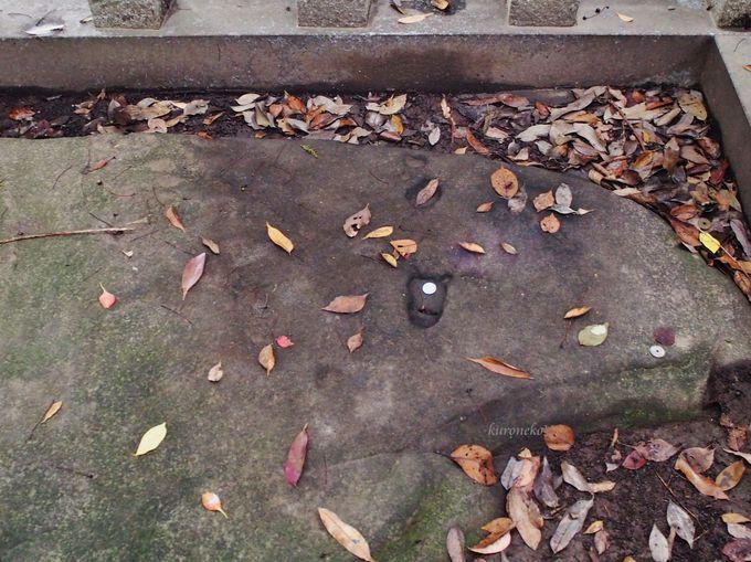 「三角池」の畔には神様の足跡が!