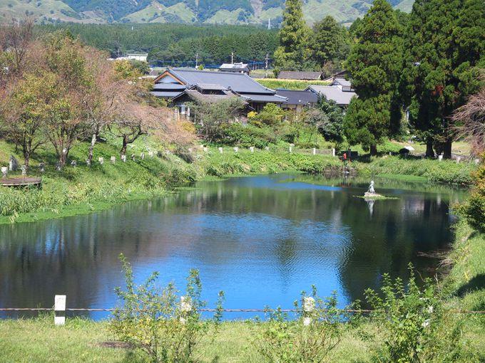 6.明神池名水公園