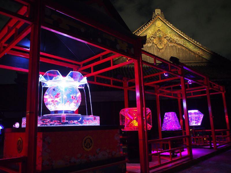 アートアクアリウム京都「二条城」の屋外展示がスゴイ!