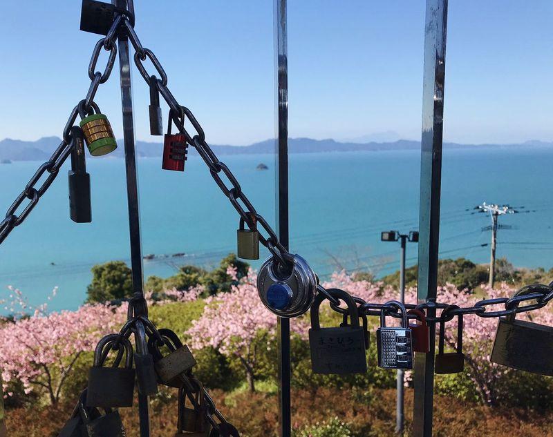 桜の名所に愛鍵?「御立岬公園」は熊本デートスポット