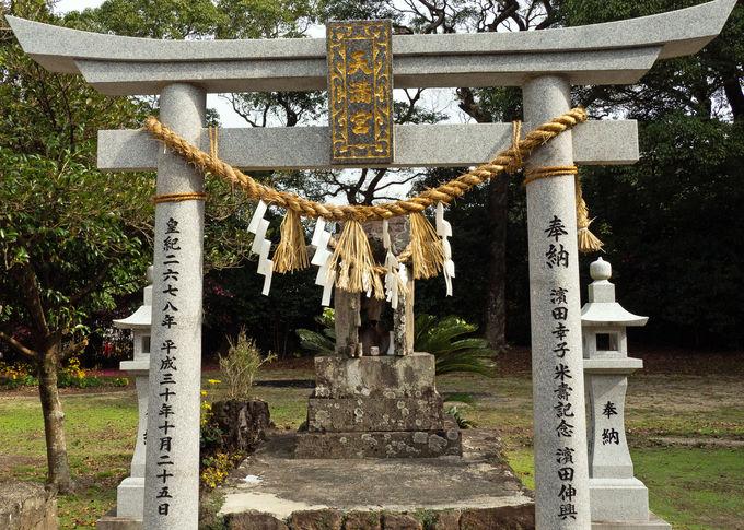 多様な神様を祀る神社 秋にはお祭りも