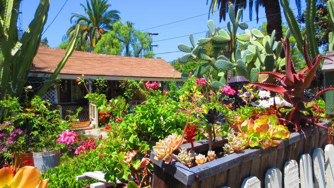 ガーデニングマニア必見のグッズが勢ぞろい!「コテージ、ホーム&ガーデン」