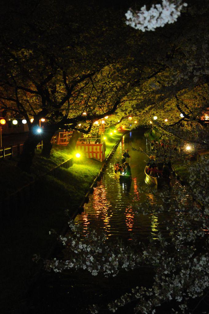 訪問時期が春〜秋なら、夜のイベントも多数!