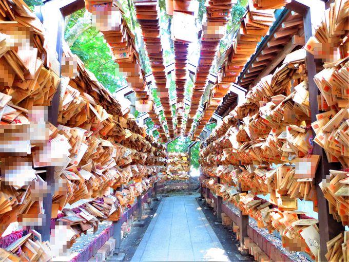 縁結びの聖地「川越氷川神社」の絵馬トンネルが凄い!