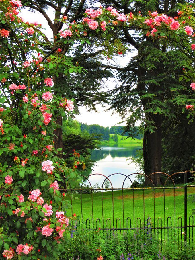 とにかく歩くブレナム宮殿!お庭はたっぷり時間をかけて