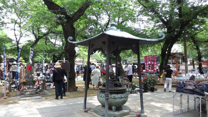 庶民的な縁日と蚤の市が楽しめる「蓮馨寺の呑龍デー」