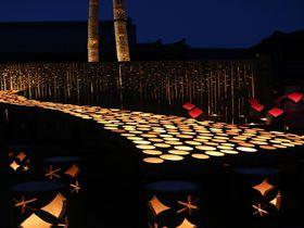秋夜の城下町に広がる幻想風景!大分「うすき竹宵」で竹灯篭の贅沢散歩