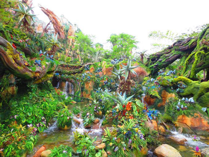溢れる自然の美しさ!ファンタジーワールド「パンドラ」
