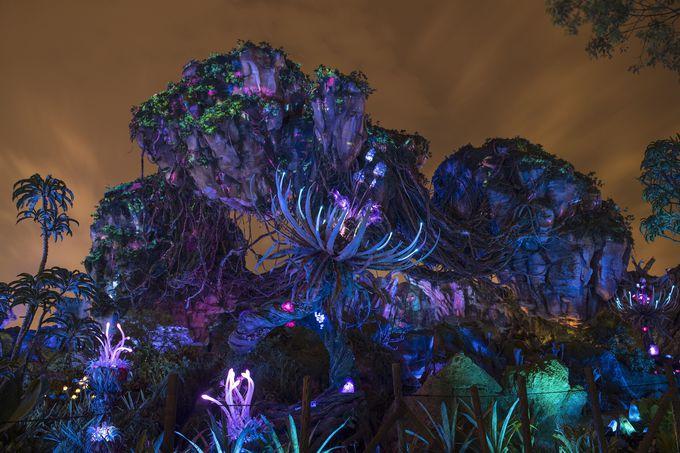 フロリダ最新のテーマランドは必訪!「パンドラ:ザ・ワールド・オブ・アバター」