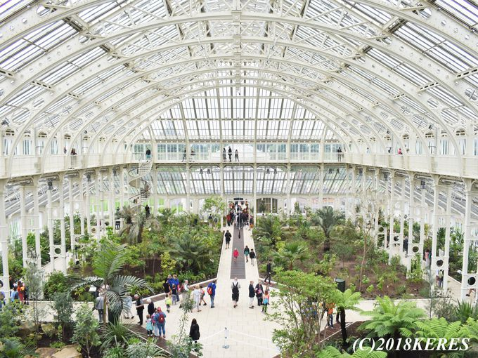 建築物の価値はバッキンガム宮殿と同等!「テンパレート ハウス」