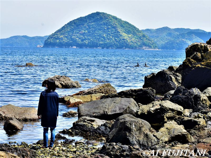 大分・臼杵の海を丸ごと体感!割烹旅館「久楽」で海鮮グルメ泊