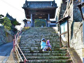 大分県臼杵城下町のココで撮りたい!映える石垣・石階段