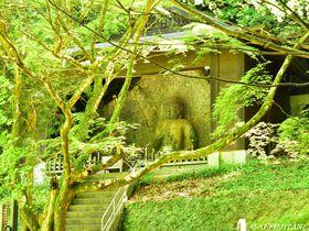 新説が面白い!「国宝臼杵石仏」は平安時代のテーマパーク!?