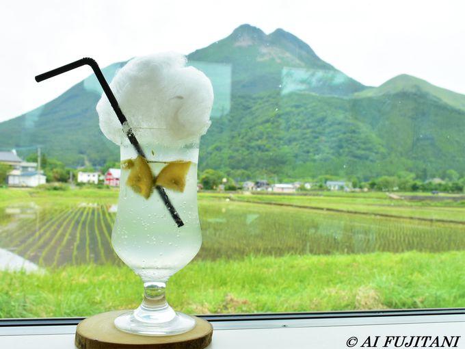 由布岳の絶景カフェ「湯布院 千家」