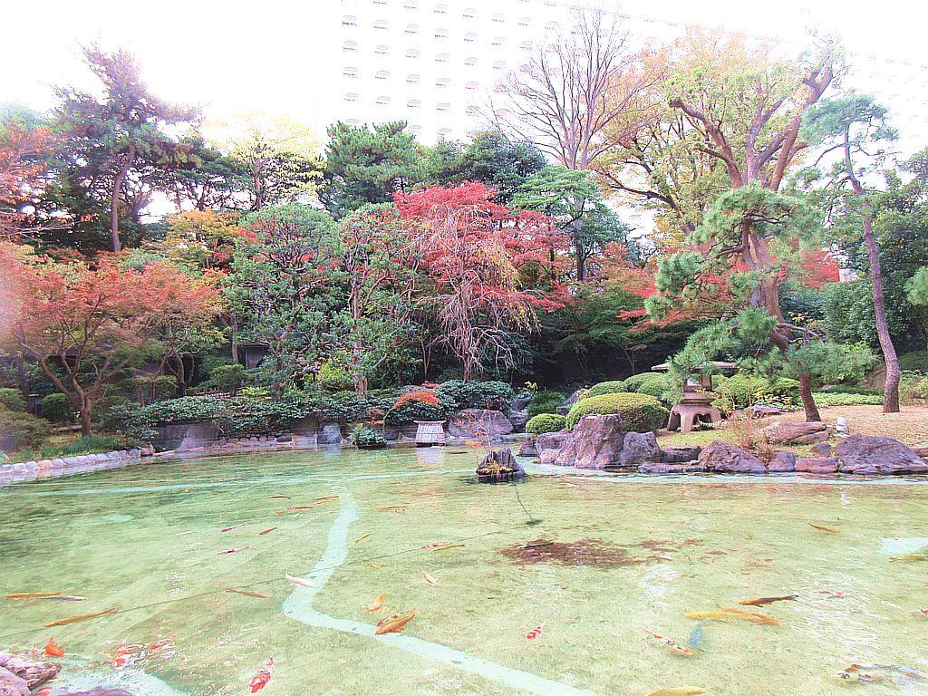 約2万平方メートルの日本庭園にお茶のお点前も