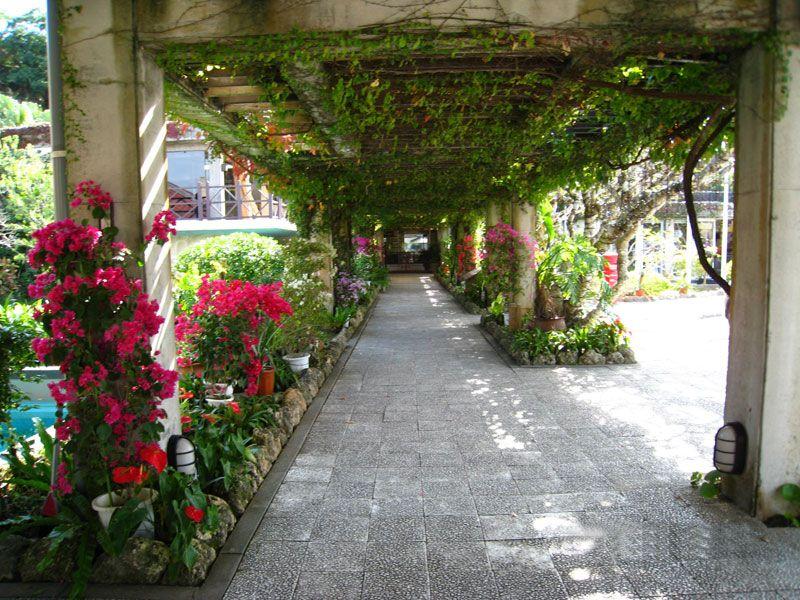広大な敷地はまるで植物園!
