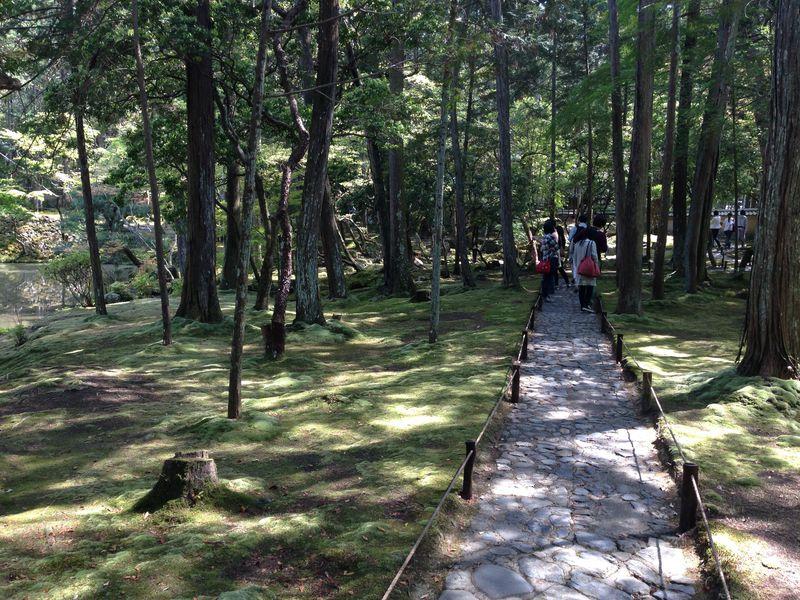 """雨の日だからこそ行きたい京都の世界遺産、""""苔寺""""こと「西芳寺」"""