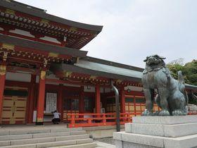 浜松で訪ねたい神社9選 井伊家ゆかりの場所も!