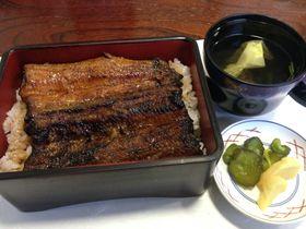うなぎの名産地・浜松で関東風と関西風のうなぎを食す!
