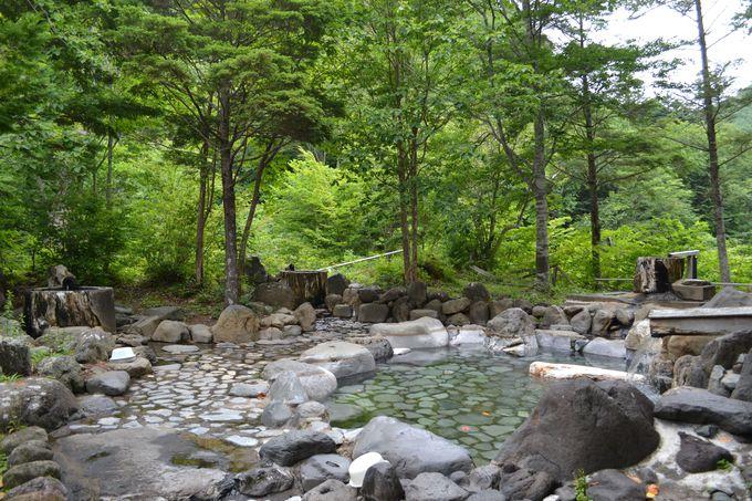 森林浴気分の混浴露天風呂