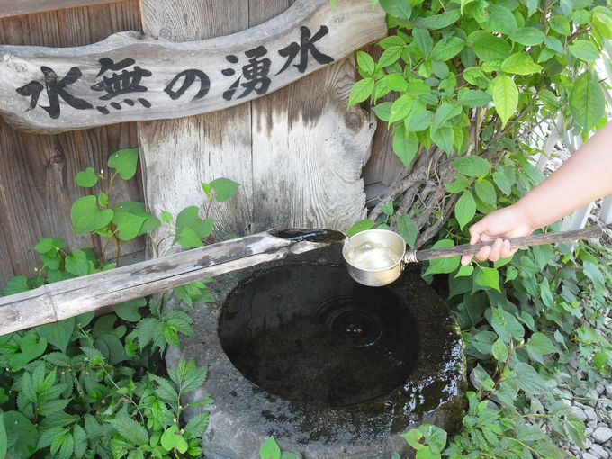 日光連山の美味しい水が味の決め手