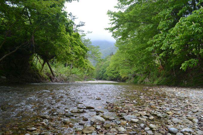 近くの清流までお散歩。川辺で朝ごはんもおすすめ