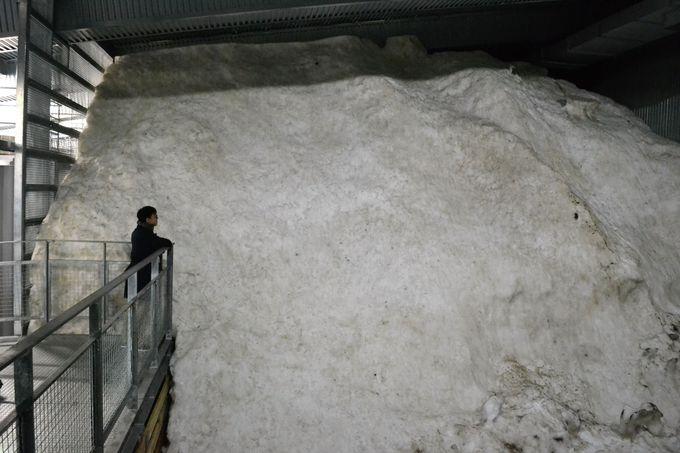 雪国の知恵が生きた「八海山雪室」の見学もぜひ