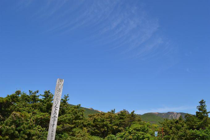 智恵子の空と季節の花に会いに