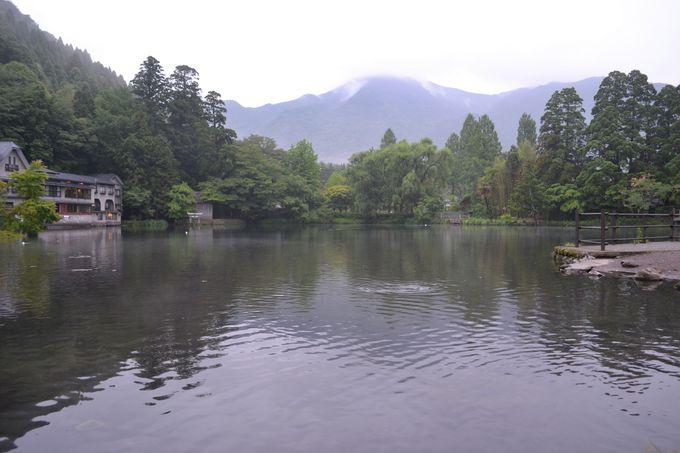 金鱗湖までは徒歩2分。朝の散歩が気持ちいい