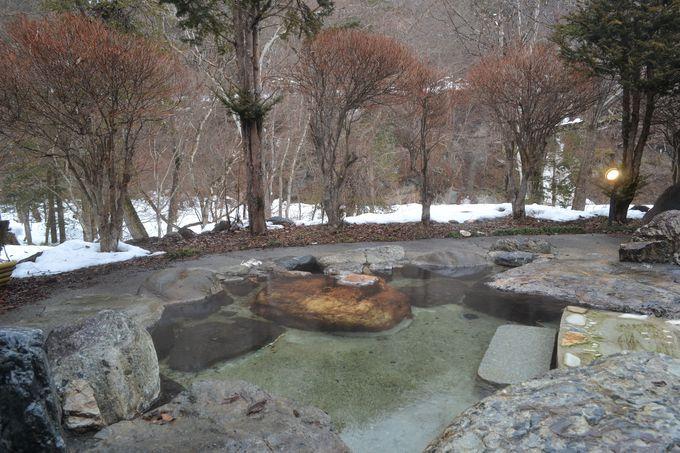 森の絶景露天風呂で日帰り入浴