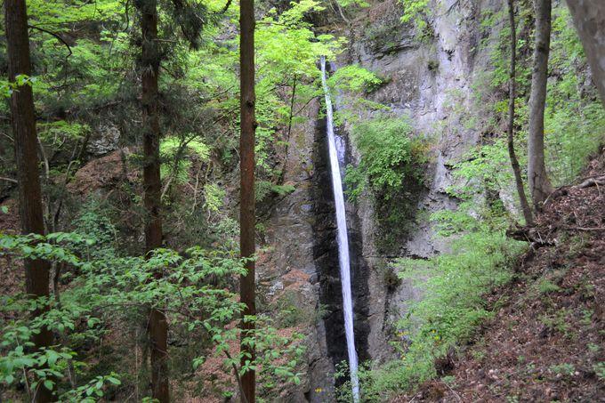 星尾温泉と合わせて南牧村の大自然に触れよう