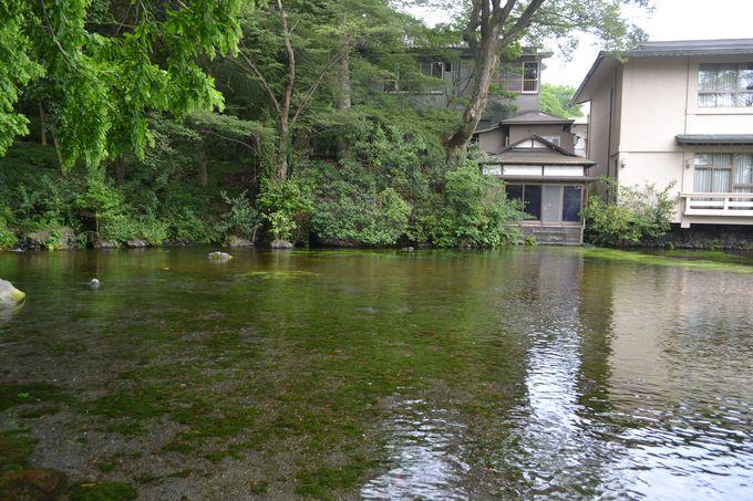境内で最もパワーがある湧玉池に浮かぶゲストハウス