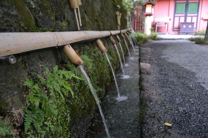 誰もいない朝の神社をお散歩