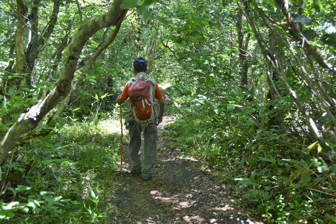 蔵王中央高原散策路の見どころ