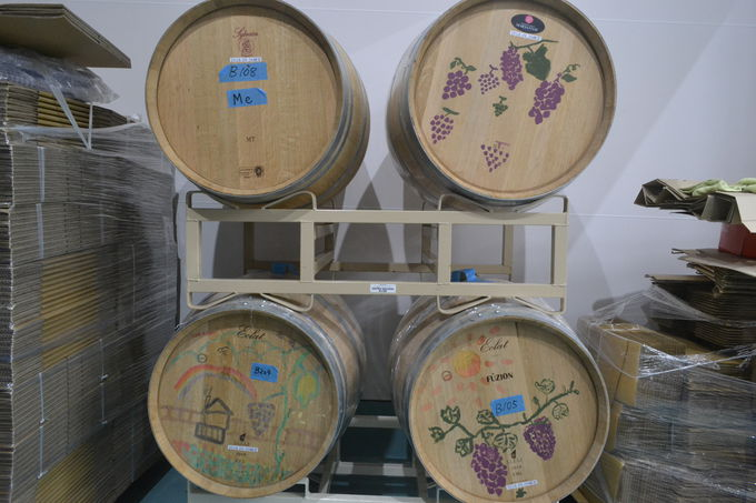 醸造所や畑を見学してワインを身近に感じよう