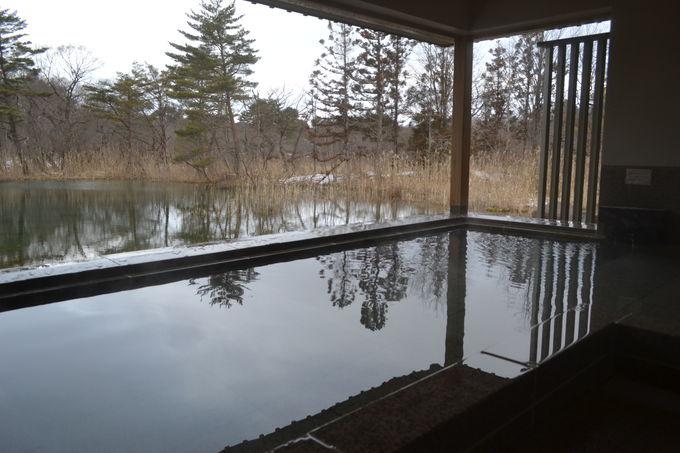 敷地内の森から湧くアルカリ性の硫黄泉
