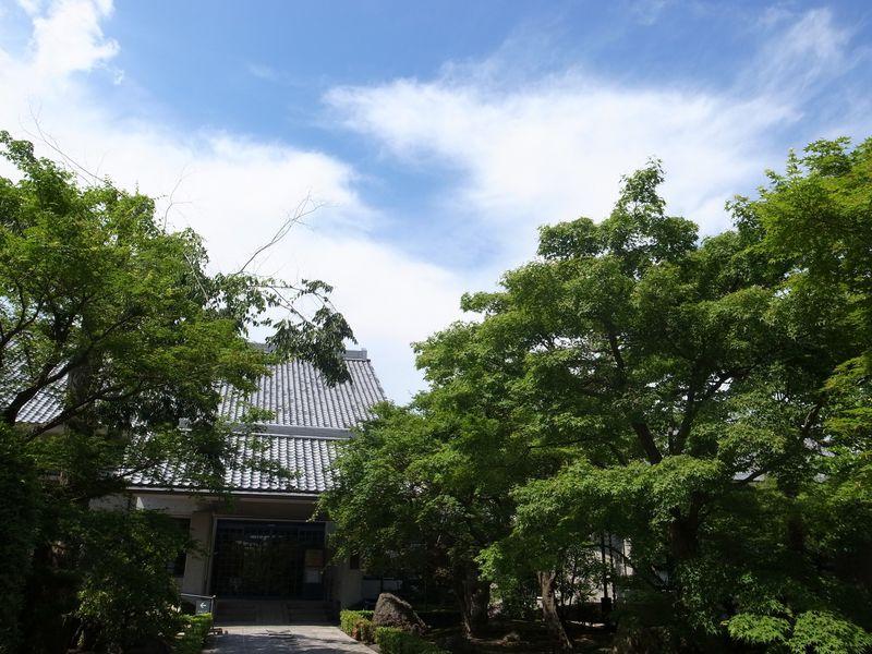 京都の芸術美の魅力を体感!「琳派四百年記念祭」で巡る京の町
