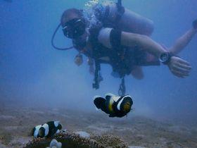 タオ島「Ban's Diving Resort」でダイビング&リゾート気分の両方をお得に満喫!