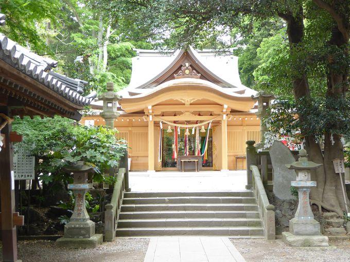 岩槻の総鎮守「久伊豆神社」でパワーをもらおう