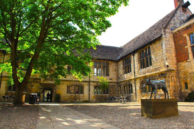 大学の校舎は、なんと歴史建造物!