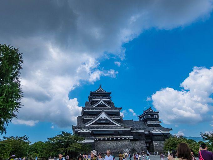 見て損はなし、迫力満点の熊本城!