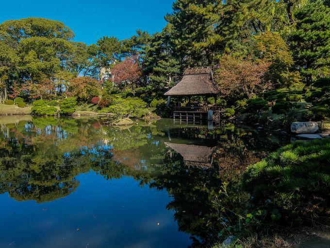6.都会のオアシス。広島中心地にある美しい庭園「縮景園」