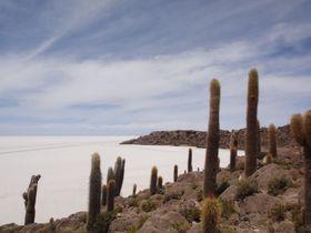 ウユニ塩湖のその先にある絶景へ!乾季にしか通れないルートを辿ってチリの国境まで続く道