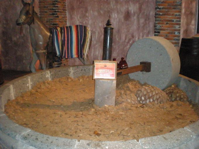 「テキーラ博物館」でテキーラができる工程を学ぼう!